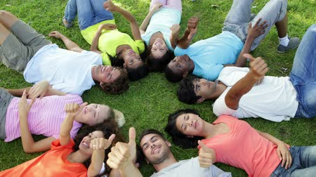 yuvarlak : Group of casual young friends lying in a circle on a sunny day Stok Video