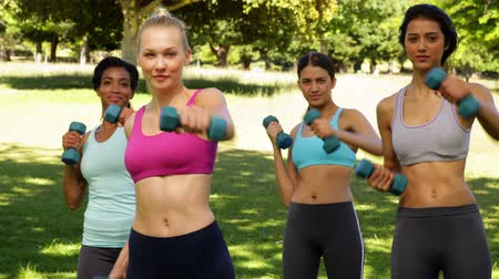атлетика : Fitness class punching with hand weights in unison on a sunny day Стоковые видеозаписи