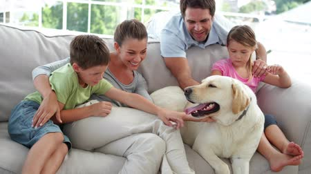 Cute family relaxing together on the couch with their dog in living room at home Стоковые видеозаписи