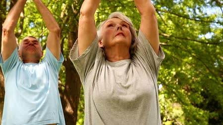 emekli : Retired couple doing yoga outside on a sunny day Stok Video