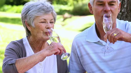 içme : Senior couple relaxing in the park together having champagne on a sunny day