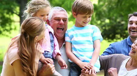 grandchild : Extended family standing in the park together posing on a sunny day Stock Footage