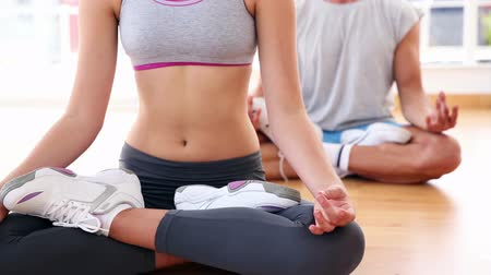 meditação : Yoga class sitting in lotus position together at the gym Vídeos
