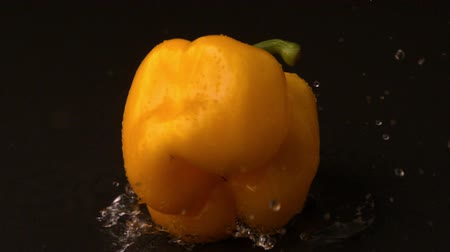 paprika : Yellow pepper falling on wet black surface in slow motion