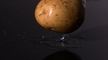 brambory : Potato falling on wet black background in slow motion