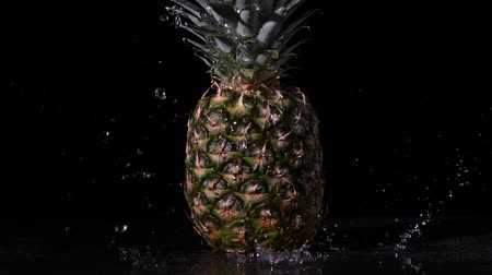 ananas : Water raining on pineapple on black background in slow motion Stok Video