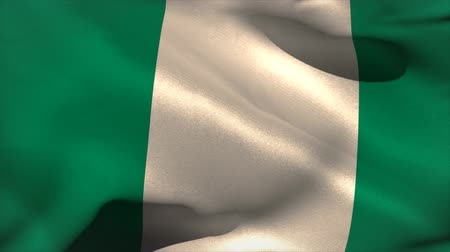 nigeria flag : Digitally generated nigeria flag waving taking up full screen