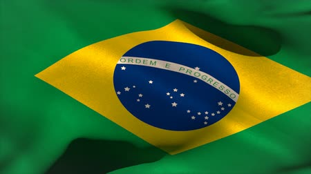 brazília : Large brazil national flag waving filling the screen