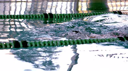 atleta : Fit female swimmer doing the butterfly stroke in swimming pool in slow motion Stock Footage