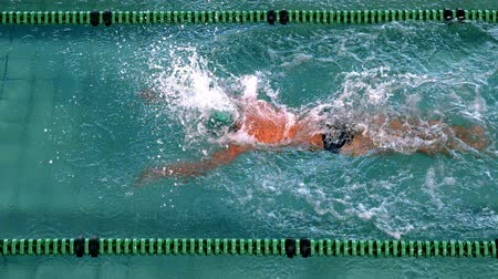 nadador : Fit swimmer doing the butterfly stroke in the swimming pool in slow motion