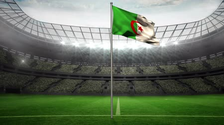 zift : Algeria national flag waving on flagpole on football pitch with flashes