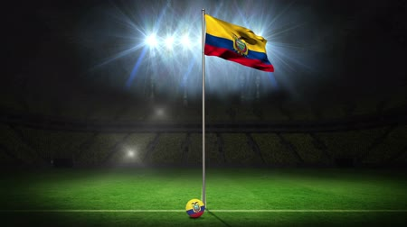 equador : Ecuador national flag waving on flagpole on football pitch with flashes Vídeos