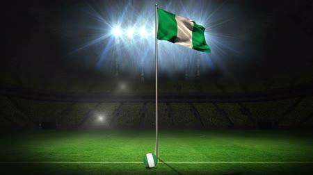 zift : Nigeria national flag waving on flagpole on football pitch with flashes