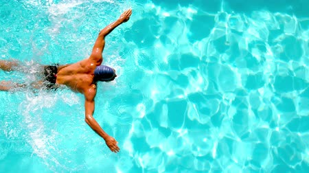 pływak : Athletic swimmer swimming across the pool overhead in slow motion Wideo