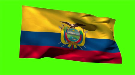 equador : Ecuador national flag blowing in the breeze on green screen background Vídeos