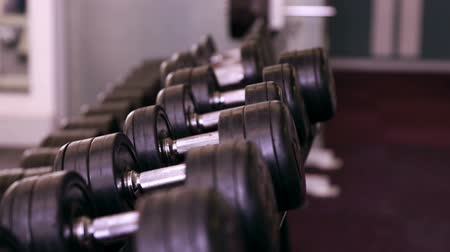 equipamento : Rack of heavy black dumbbells at the gym