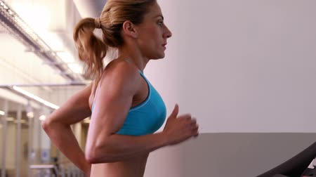 атлетика : Super fit woman running on the treadmill at the gym Стоковые видеозаписи