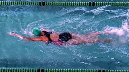 pływak : Fit female swimmer doing the front stroke in the swimming pool in the leisure center