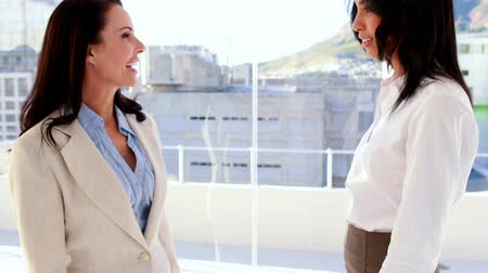 nóbl : Pretty businesswoman smiling and talking in the office