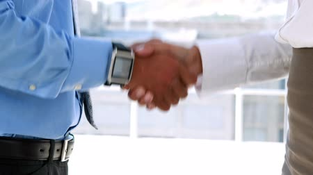 viselet : Business partners shaking hands by large window in the office