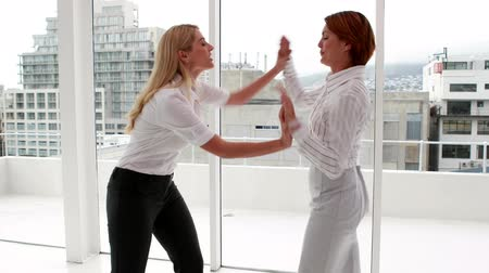 kavga : Angry businesswoman having a cat fight in the office