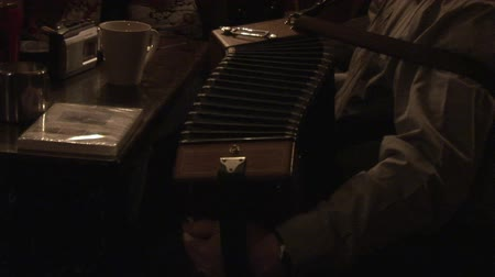İrlanda : Stock Footage of a Man Playing an Accordian
