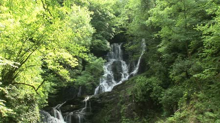 İrlanda : Torc waterfalls the most beautiful in Ireland Stok Video
