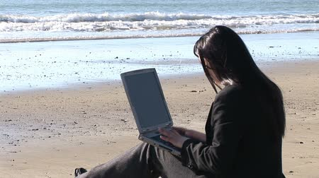 executivo : Stock Video Footage of a Woman woman working on a laptop outdoors at the Beach