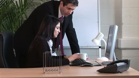 dialog : Stock Video footage of a Businesswoman Working in Office