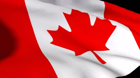 canadian maple leaf : 3d Render of the Canadian flag in HD