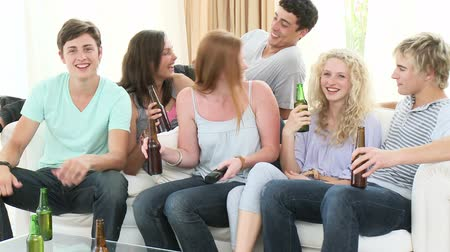 beer house : Footage in high definition of young friends drinking beer at home Stock Footage