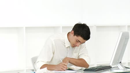 auditing : Young businessman doing his accounts