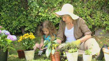 бабушка : Grandmother and granddaughter gardening together in the garden
