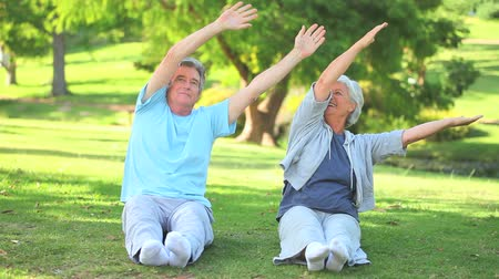 aktivní : Mature couple doing their stretches in the park