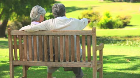 senior lifestyle : Mature couple talking while sitting on a bench in the park