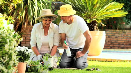 ajoelhado : Mature couple kneeling on the grass in the garden spraying potted plants Vídeos