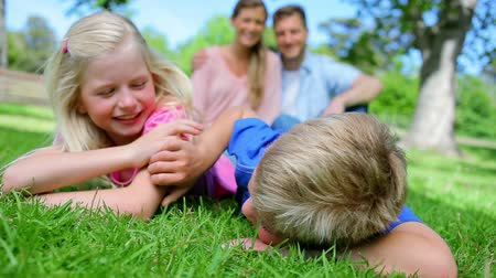 nézett : Two siblings smiling while tickling each other as they lie on the grass with their parents sitting behind them Stock mozgókép