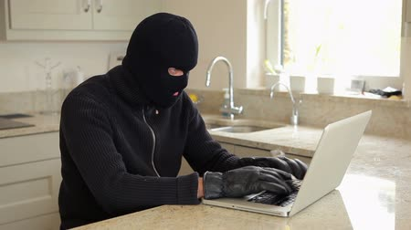ladrão : Burglar hacking into laptop in kitchen