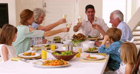 смешанной расы человек : Extended family toasting at dinner at home in the dining room