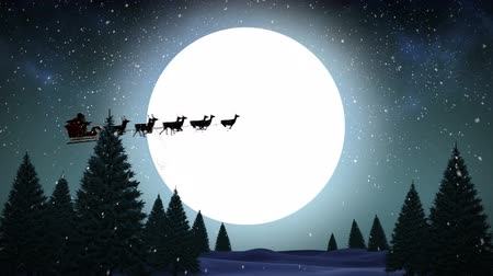 santa : Digital animation of Santa flying over fir tree forest