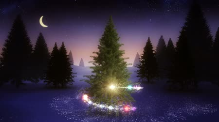 pré natal : Digital animation of Magic light swirling around snowy christmas tree