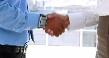 партнеры : Business partners shaking hands by large window in the office