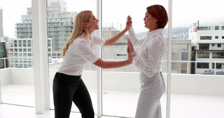munkahelyek : Angry businesswoman having a cat fight in the office