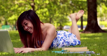 çim : Pretty student studying outside on campus on a sunny day Stok Video