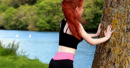 ventoso : Fit redhead warming up against a tree on a windy day Stock Footage