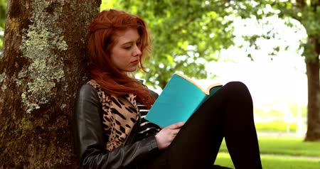 enciclopédia : Pretty redhead reading a book in the park on a sunny day