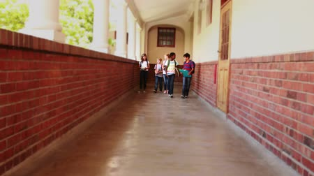 walking back : Cute pupils walking down the hall at the elementary school