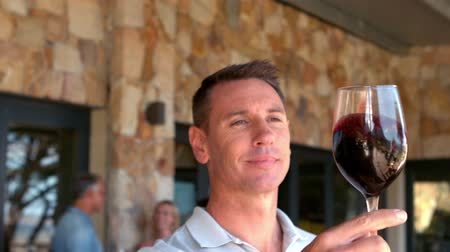 виноградник : Smiling man examining red wine in slow motion at vineyard