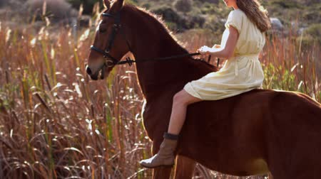 horse riding : Pretty woman riding on a horse in slow-motion