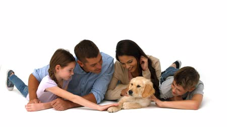 щенок : Happy family with their puppy on white background in ultra hd format